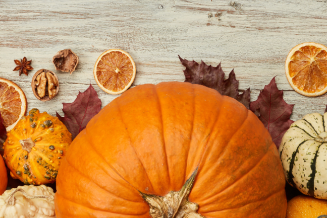 Наша Dacha: Осенние вкусы